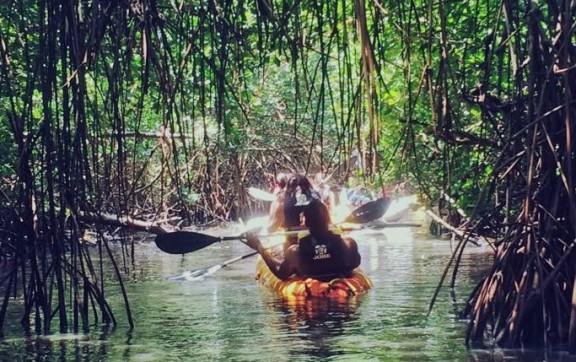 Kayak N°3