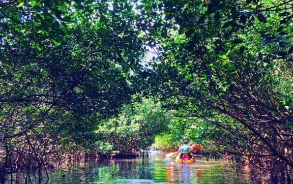 Kayak N°4